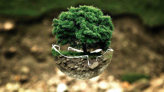 RUN Blog   Warum Nachhaltigkeit für Unternehmen immer wichtiger wird