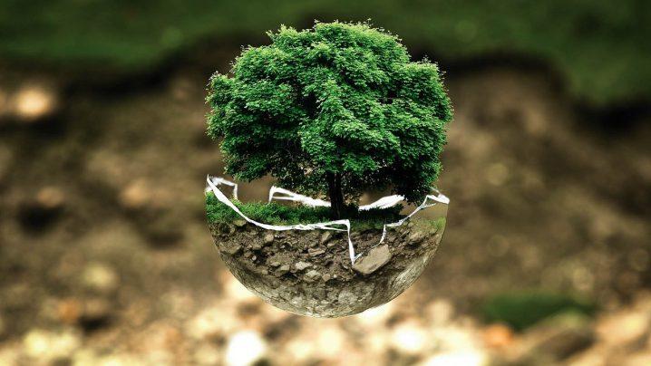 RUN Blog | Warum Nachhaltigkeit für Unternehmen immer wichtiger wird